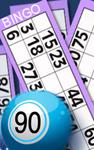 90 bingo ticket und regeln